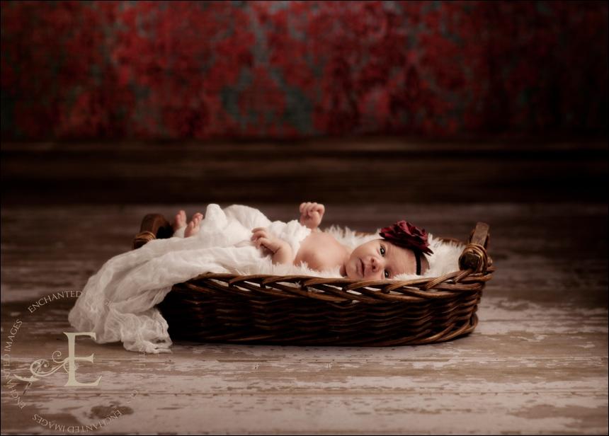 rocklin newborn photographer